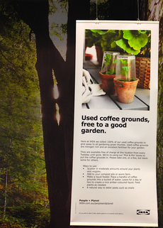 IKEA Tempe's used coffee grounds are free for staff and customers to take for fertiliser